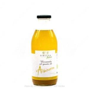Bevanda alla albicocca bio 750g